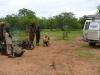 africa221